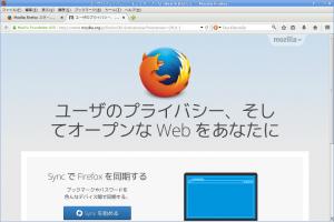 FirefoxOnDebian03